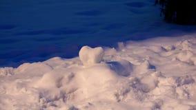 ρηχό χιόνι καρδιών πεδίων βάθους Στοκ Εικόνες
