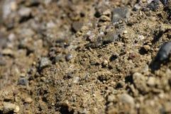 ρηχό χώμα εστίασης στοκ εικόνες με δικαίωμα ελεύθερης χρήσης