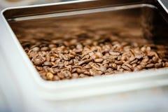 Ρηχό DOF arabica υπόβαθρο φασολιών καφέ Στοκ εικόνες με δικαίωμα ελεύθερης χρήσης