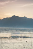 ρηχό siapu θαλασσών πρωινού tidelands Στοκ εικόνα με δικαίωμα ελεύθερης χρήσης