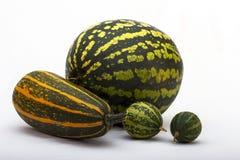 Ριγωτή ακόμα-ζωή φρούτων και λαχανικών Στοκ Εικόνες