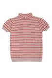 Ριγωτή μπλούζα Στοκ Εικόνα