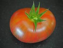 Ριγωτή ντομάτα Στοκ εικόνα με δικαίωμα ελεύθερης χρήσης