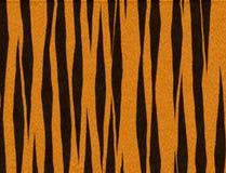 ριγωτή τίγρη ανασκόπησης Στοκ φωτογραφία με δικαίωμα ελεύθερης χρήσης
