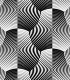 Ριγωτό μαύρο άσπρο διανυσματικό άνευ ραφής σχέδιο κοχυλιών Στοκ Εικόνες