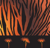 Ριγωτό σχέδιο τιγρών Στοκ εικόνες με δικαίωμα ελεύθερης χρήσης
