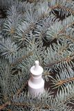 ρινικός ψεκασμός Το μπουκάλι είναι στον πίνακα Από τους κλάδους των μπλε ερυθρελατών Στοκ Φωτογραφίες
