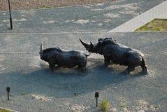 ρινόκεροι Στοκ φωτογραφία με δικαίωμα ελεύθερης χρήσης