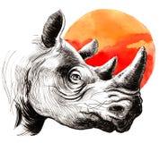 Ρινόκερος και ήλιος Στοκ φωτογραφία με δικαίωμα ελεύθερης χρήσης