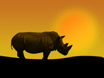 Ρινόκερος και ηλιοβασίλεμα Στοκ φωτογραφία με δικαίωμα ελεύθερης χρήσης