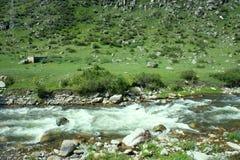 Ροές ποταμών βουνών στο δάσος κάτω από την προκατάληψη Στοκ εικόνα με δικαίωμα ελεύθερης χρήσης