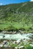 Ροές ποταμών βουνών στο δάσος κάτω από την προκατάληψη Στοκ φωτογραφία με δικαίωμα ελεύθερης χρήσης