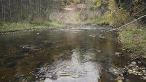 Ροές του νερού στον ποταμό πέρα από τους βράχους φιλμ μικρού μήκους