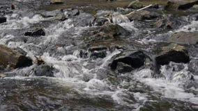 Ροές του νερού στον ποταμό πέρα από τους βράχους απόθεμα βίντεο