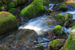 ροή πέρα από το ύδωρ βράχων Στοκ Εικόνες