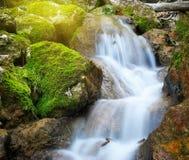Ροή ποταμακιών άνοιξη Στοκ φωτογραφία με δικαίωμα ελεύθερης χρήσης