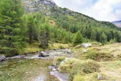 Ροή ποταμών βουνών στοκ φωτογραφία