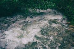 Ροή ποταμών στην άγρια ζούγκλα Περού τρισδιάστατος νότος τρία απεικόνισης αριθμού της Αμερικής όμορφος διαστατικός πολύ Στοκ φωτογραφία με δικαίωμα ελεύθερης χρήσης