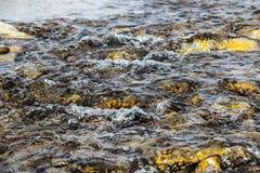 Ροή ποταμών Στοκ Εικόνες