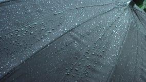 Ροή σταγόνων βροχής κάτω από την ομπρέλα απόθεμα βίντεο