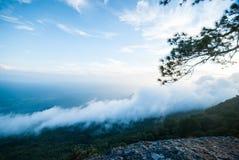 Ροή της υδρονέφωσης στο βουνό, εθνικό πάρκο Phukradung, Ταϊλάνδη Στοκ Εικόνες