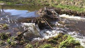 Ροή του νερού ρευμάτων μέσω του φράγματος απόθεμα βίντεο