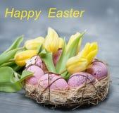 ροζ αυγών Πάσχας Στοκ Εικόνα