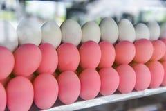 Ροζ αυγών - συντηρημένο αυγό Στοκ Φωτογραφίες