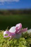 ροζ βρύου αυγών Πάσχας τόξ&omega Στοκ φωτογραφία με δικαίωμα ελεύθερης χρήσης