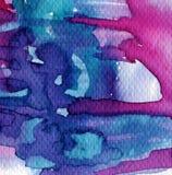 Ροζ και υπόβαθρο Στοκ Εικόνες