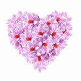 ροζ καρδιών λουλουδιών Στοκ εικόνες με δικαίωμα ελεύθερης χρήσης