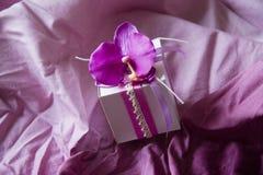 Ροζ κιβωτίων με τη ορχιδέα Στοκ φωτογραφίες με δικαίωμα ελεύθερης χρήσης
