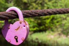 ροζ κλειδωμάτων Στοκ εικόνες με δικαίωμα ελεύθερης χρήσης