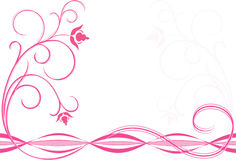ροζ λουλουδιών στοκ φωτογραφίες