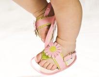 ροζ ποδιών μωρών Στοκ Εικόνες