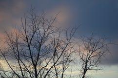 Ροζ στους ουρανούς του Νιού Χάμσαιρ Στοκ εικόνα με δικαίωμα ελεύθερης χρήσης