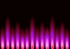 ροζ φλογών Στοκ εικόνες με δικαίωμα ελεύθερης χρήσης
