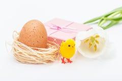 Ροζ, δώρο, κοτόπουλο και τουλίπες αυγών Πάσχας Στοκ Εικόνες