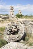 Ροκ Kamani Pobiti μοναδικό φυσικό (μόνιμες πέτρες, πέτρινο δάσος) Στοκ εικόνες με δικαίωμα ελεύθερης χρήσης