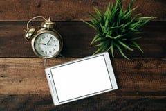 Ρολόι, πράσινες εγκαταστάσεις, ψηφιακή ταμπλέτα σε ένα ξύλινο επιτραπέζιο υπόβαθρο Στοκ εικόνες με δικαίωμα ελεύθερης χρήσης