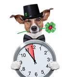 Ρολόι ρολογιών σκυλιών οχημάτων αποκομιδής απορριμμάτων καπνοδόχων Στοκ Φωτογραφίες