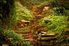 Ρομαντικά σκαλοπάτια φθινοπώρου στοκ εικόνα
