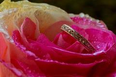 Ρομαντικά τριαντάφυλλα και δαχτυλίδια για Valentine& x27 ημέρα του s Στοκ φωτογραφία με δικαίωμα ελεύθερης χρήσης