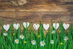 Ρομαντικές καρδιές αγάπης με τα φρέσκα λουλούδια μαργαριτών στο ανθίζοντας λιβάδι Στοκ Εικόνα