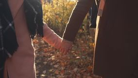 Ρομαντική άποψη κινηματογραφήσεων σε πρώτο πλάνο των ενωμένων χεριών του άνδρα και της γυναίκας που περπατούν στο δάσος πτώσης απόθεμα βίντεο