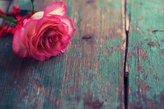 ρομαντική ανασκόπηση Στοκ Εικόνες