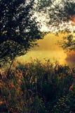 Ρομαντική ανατολή με την ομίχλη και gossamer στοκ φωτογραφία με δικαίωμα ελεύθερης χρήσης