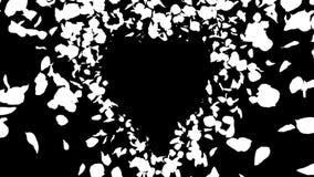 Ρομαντικός κίτρινος κόκκινος πετάγματος αυξήθηκε άλφα απομονωμένος βρόχος καρδιών πετάλων λουλουδιών απόθεμα βίντεο