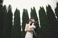 Ρομαντικός, παραμύθι, ευτυχές το ζεύγος που αγκαλιάζει και που φιλά σε ένα πάρκο, δέντρα στο υπόβαθρο Στοκ Φωτογραφία