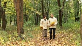Ρομαντικός περίπατος φθινοπώρου απόθεμα βίντεο